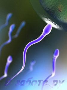 10 обязательных действий для достижения беременности фото картинки фотки фотографии